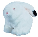 White Robbie Rabbit Battery Operated Plush Toy